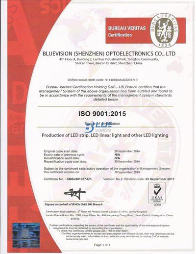 ISO 9001 2015 - BLUEVISION