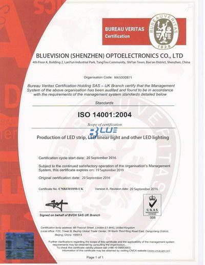 ISO 14001 2004 - BLUEVISION